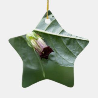 Belladonna or deadly nightshade (Atropa belladonna Ceramic Ornament