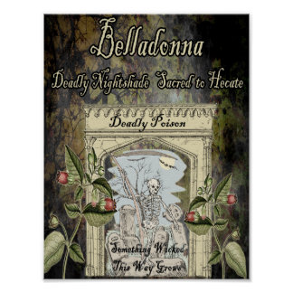 BELLADONNA WITCH'S HERB POSTER