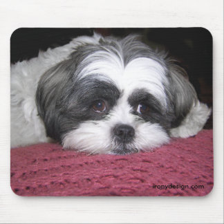 Belle The Shih Tzu Mouse Pad