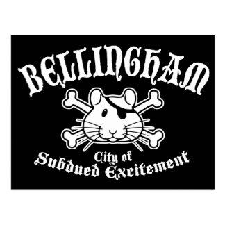 Bellingham Pirate Postcard