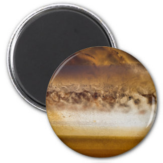 Belt of Jupiter Geode Magnet