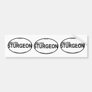 Beluga Sturgeon Euro Stickers