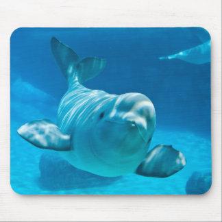 Beluga Whale Mouse Pad