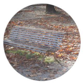 Bench in autumn park with dead leaves plate