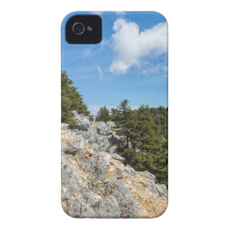 Bench on rocky mountain with trees and blue sky Case-Mate iPhone 4 cases