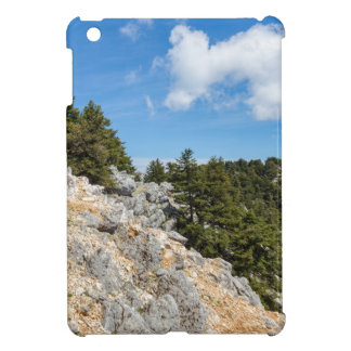 Bench on rocky mountain with trees and blue sky iPad mini case