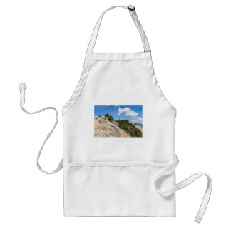 Bench on rocky mountain with trees and blue sky standard apron