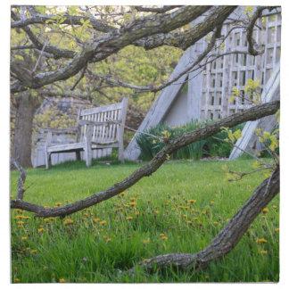 Bench Through The Trees Napkin