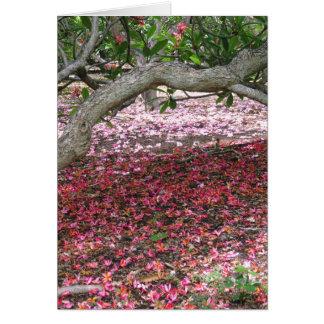 Beneath the Plumeria Trees Card