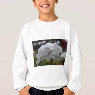 Benediction Sweatshirt
