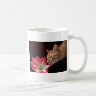 Bengal Cat Amaryllis Digital Photograph Basic White Mug