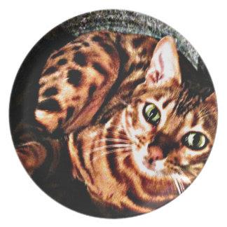 Bengal Cat Bucket Print Plates
