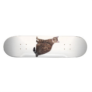 Bengal Cat skateboard with gorgeous cat featured