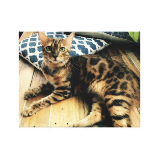 Bengal lovers canvas print