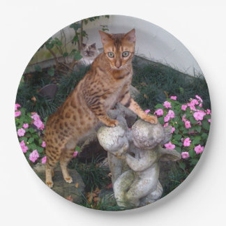 Bengal on statue paper plate