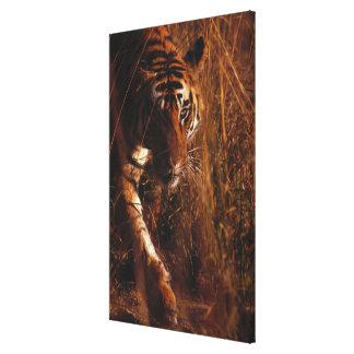 Bengal Tiger 4 Canvas Print
