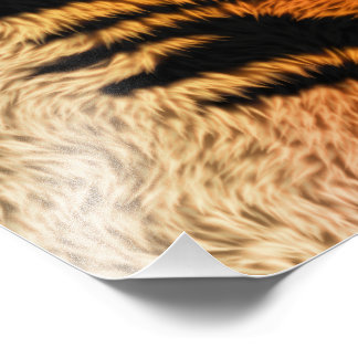 Bengal Tiger Animal Fur Photo Print