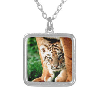 Bengal Tiger Cub Peers Out Silver Plated Necklace