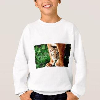Bengal Tiger Cub Peers Out Sweatshirt