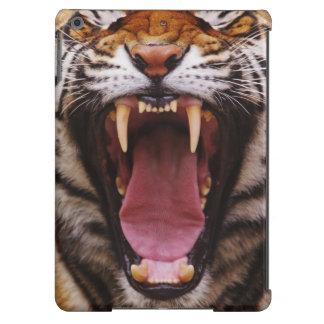 Bengal Tiger, Panthera tigris 2 iPad Air Case