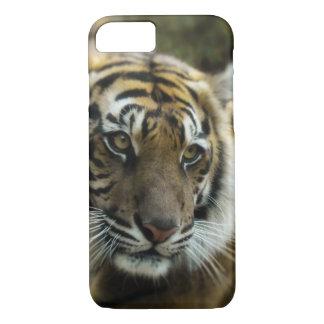 Bengal Tiger Photo iPhone 8/7 Case