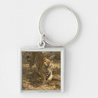 Bengal Tiger walking Keychain