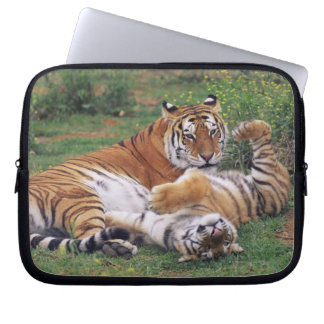 Bengal tigers playing laptop sleeve