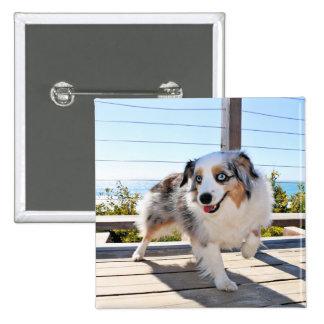 Bennett - Aussie Mini - Rosie - Carmel Beach 15 Cm Square Badge