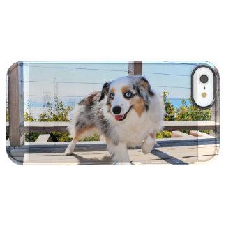 Bennett - Aussie Mini - Rosie - Carmel Beach Clear iPhone SE/5/5s Case