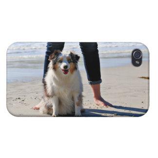 Bennett - Aussie Mini - Rosie - Carmel Beach iPhone 4 Case