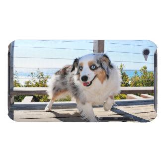 Bennett - Aussie Mini - Rosie - Carmel Beach iPod Touch Case