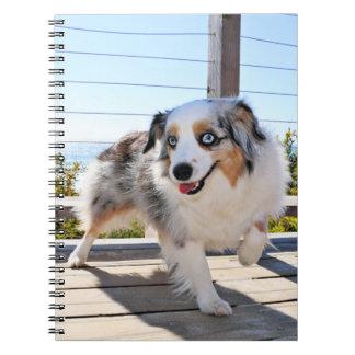 Bennett - Aussie Mini - Rosie - Carmel Beach Notebook