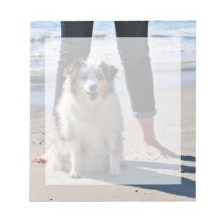 Bennett - Aussie Mini - Rosie - Carmel Beach Notepad