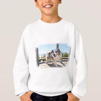 Bennett - Aussie Mini - Rosie - Carmel Beach Sweatshirt