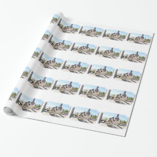Bennett - Aussie Mini - Rosie - Carmel Beach Wrapping Paper