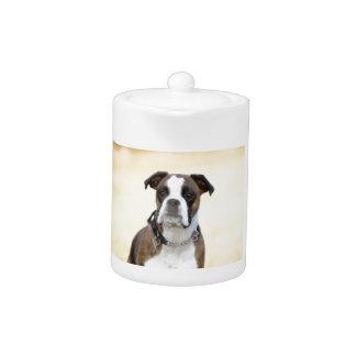 Benson the Boxer dog