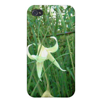 Bent Blossoms iPhone 4 Cases