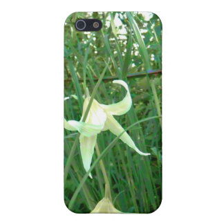 Bent Blossoms iPhone 5/5S Covers