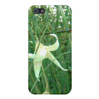 Bent Blossoms iPhone 5 Cases