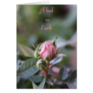 Bereavement card, rose bud card