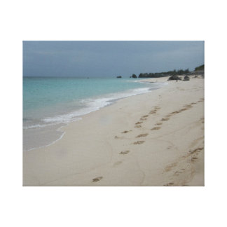 Bermuda beach canvas print