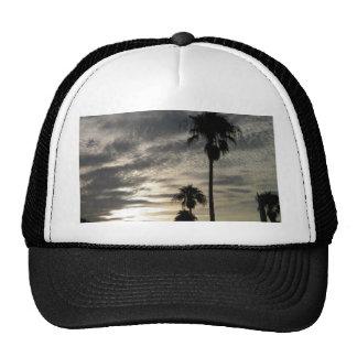 Bermuda Palms Cap