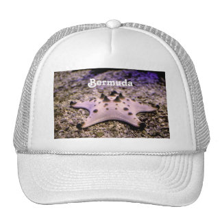 Bermuda Starfish Cap