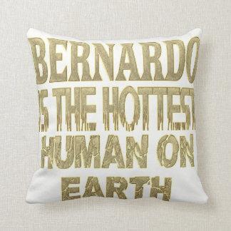 Bernardo Pillow