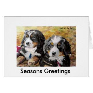 Berner Nation greeting card