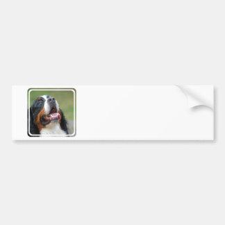Berner Sennenhund Dog Bumper Sticker
