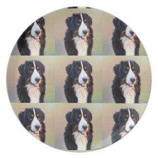 Berner Sennenhund Plate