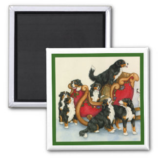 Berners in Sleigh Magnet