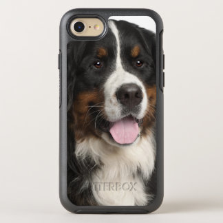 Bernese Mountain Dog (1 year old) OtterBox Symmetry iPhone 8/7 Case