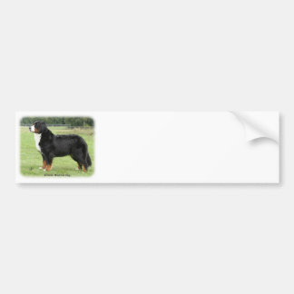 Bernese Mountain Dog 9Y236D-087 Bumper Stickers